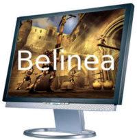Ремонт мониторов Belinea